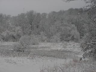 snowy creek bottom