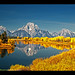 Reflecting on the Fall Colors at Oxbow Bend – Grand Teton National Park, Wyoming, USA by Sam Antonio Photography