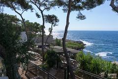 Cap d'Ail to Monaco