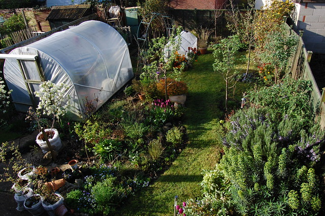 Looking down on the back garden