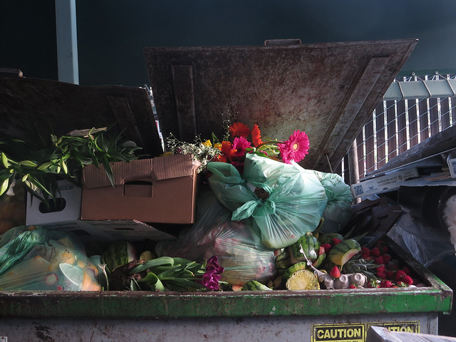 flowers in the compost (2014)