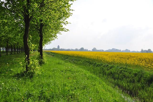 Laan van Nittersum (2 images)