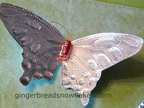 Crimson Lanka Butterfly