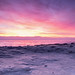 Openlands Sunrise 2 by mb.kinsman