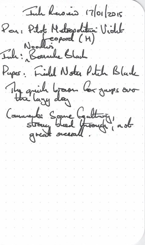 Noodler's Bernanke Black Ink Review - Field Notes
