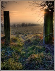 One cold a frosty morning. Frankley.