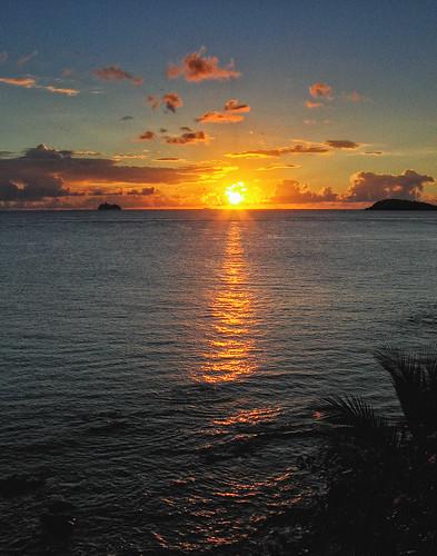 cruise sunset reflection tree water canon ship palm cruiseship caribbean virginislands usvi
