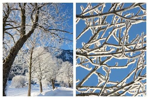 Winterzauber 2015-02-113