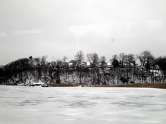 Trees And Water In Winter.
