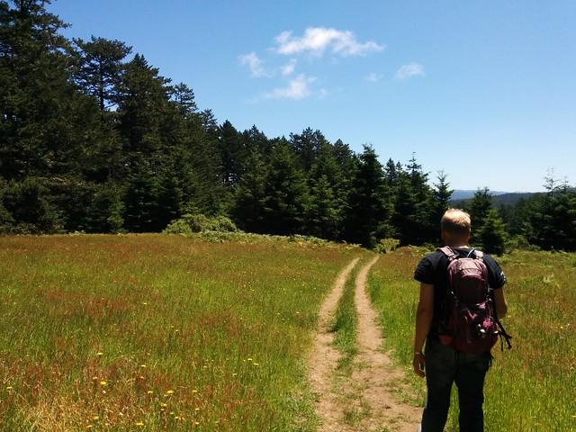 Mt Wittenberg Trail