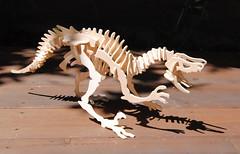 Wooden Dino Bones