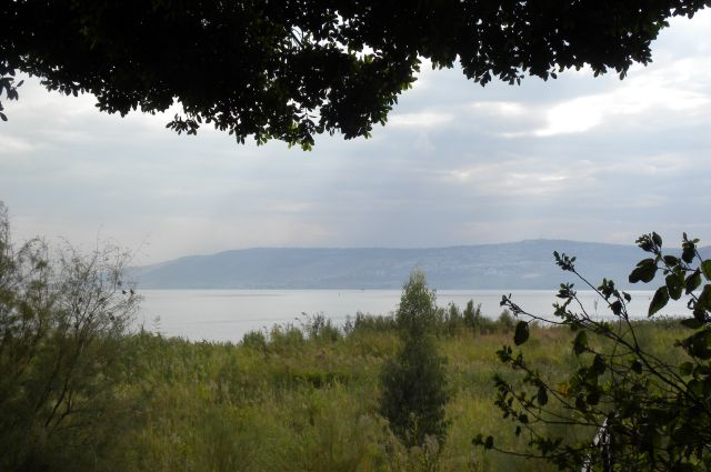 LCH June 07 Sea of Galilee Shoreline
