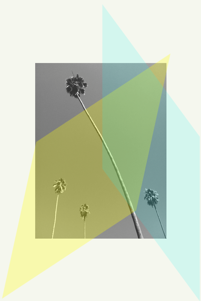 LA Palms Graphic