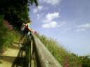 Photo-0540