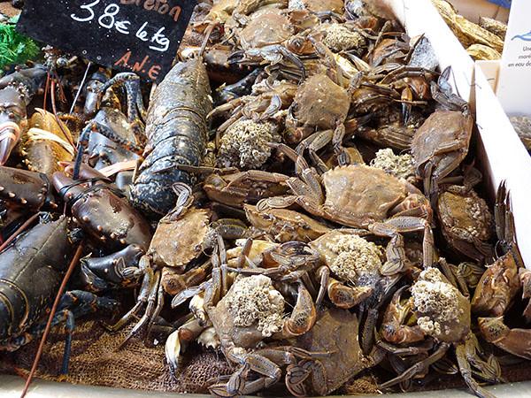 homards et étrilles