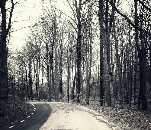 Rusty road