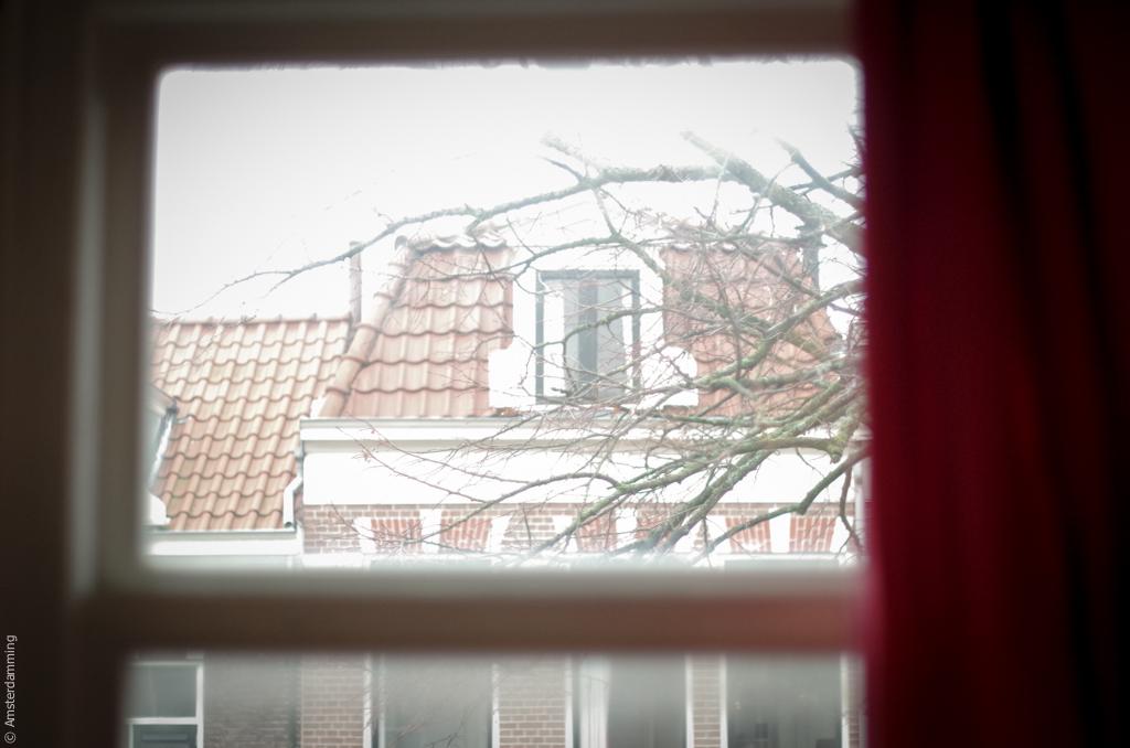 Haarlem, Interior