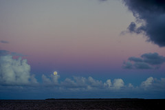 Moon over the Bay at Sunset 002
