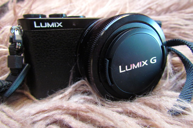 Panasonic Lumix GM1 Camera