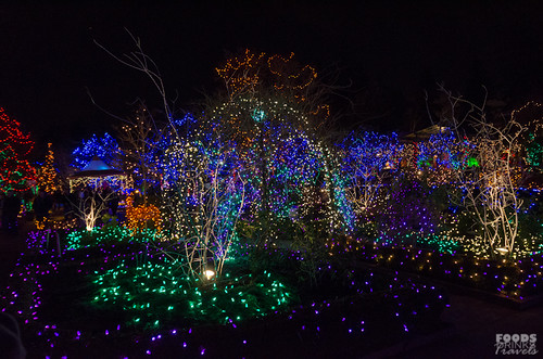 Christmas Lights @ VanDusen Garden