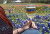 TX bluebonnet wine tour