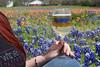 TX bluebonnet wine tour