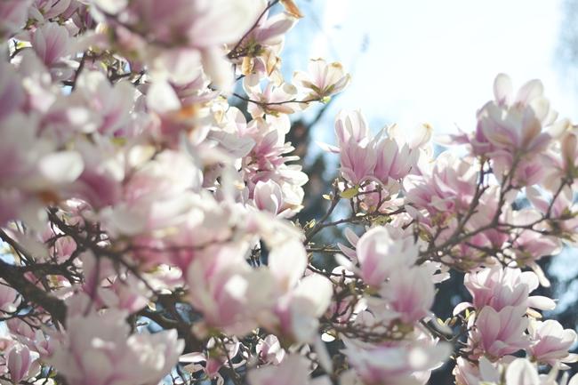 Momente im April Eugli (5)