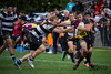20140418 Rugby_UHRams 7.jpg by ATPhoto_Yellowbond