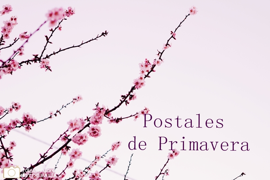 Postales de Primavera portada