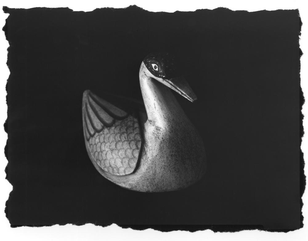 Duck_Print001a
