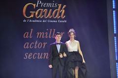 gala VII Premis Gaudí (34)