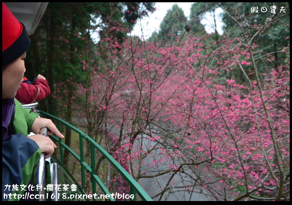 九族文化村-櫻花茶會DSC_4448