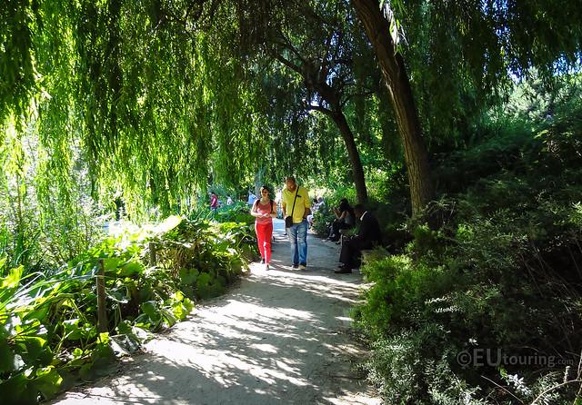 Tree covered paths within jardin yitzhak rabin flickr for Jardin yitzhak rabin