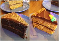 Chocolat Deep Dark Cakes