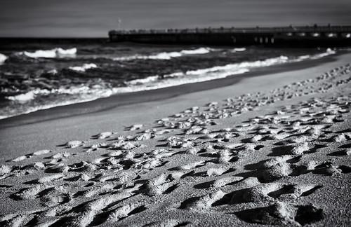 blackandwhite bw beach monochrome walking nikon impression rambling d800 notfilm nikond800 ihavenoideawhyimwritingthis littletinperson