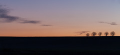 Sunrise @ Specy I