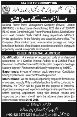 National Power Parks Management Company Chief Internal Auditor Required