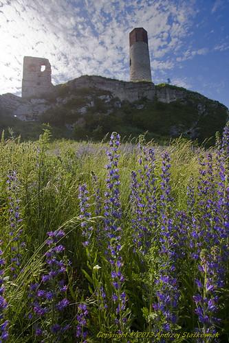 zamek Olsztyn_2013_06_17_9999_1