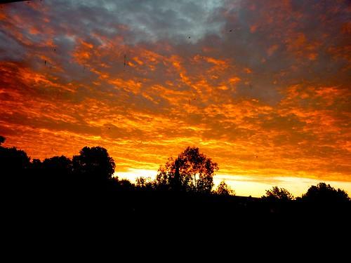 Dawn from window width=