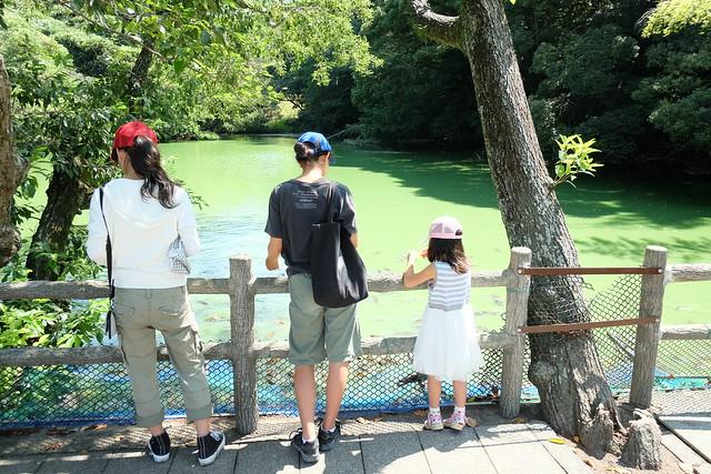 130901家族で日本平動物園 024