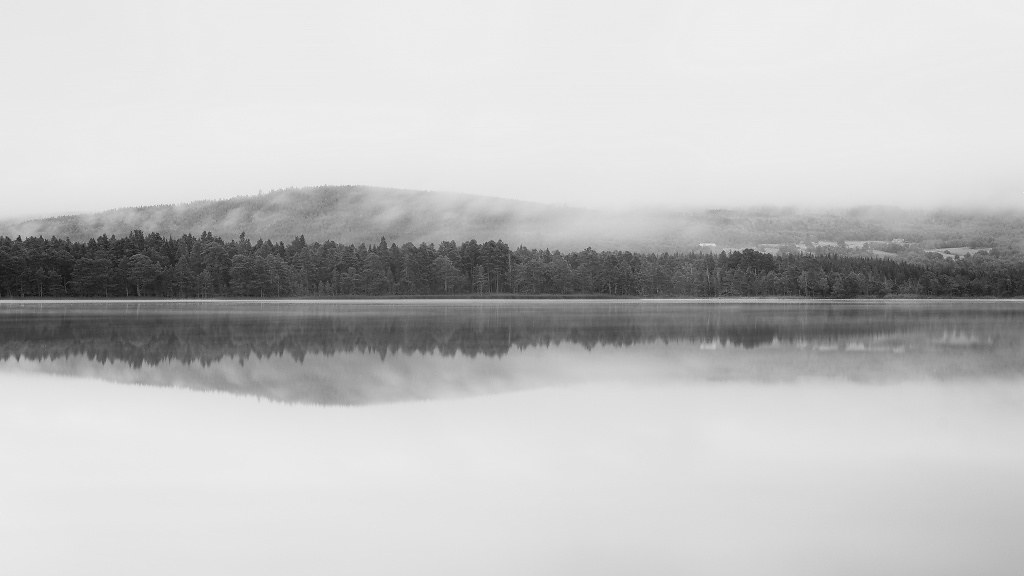 Reflections on Loch Garten 2