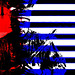 Small photo of Benny Wenda Morning Star Flag West Papua