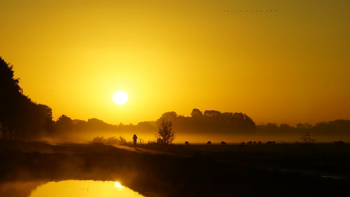 morning sun mist holland nature fog sunrise landscape day sony nederland zon landschap zuilichem gelderland zonsopkomst ochtendmist nieuwaal