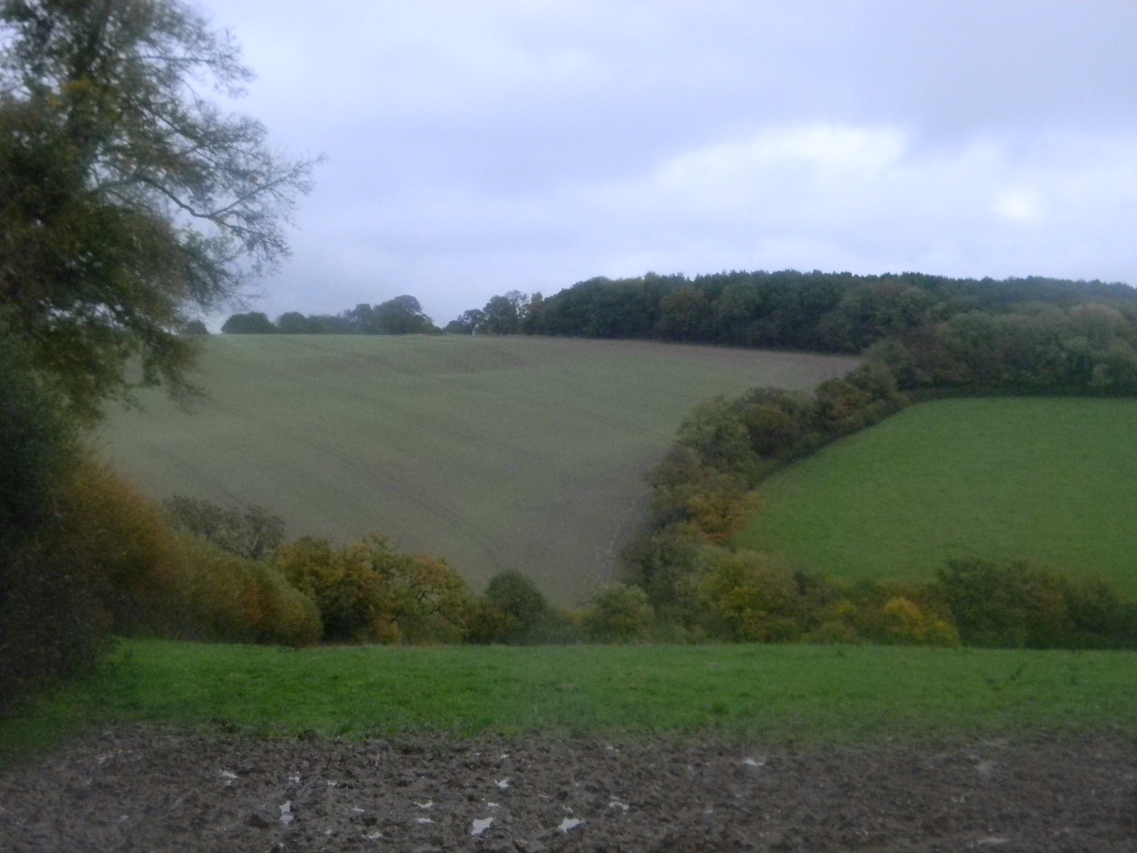 View back Chorleywood to Chesham