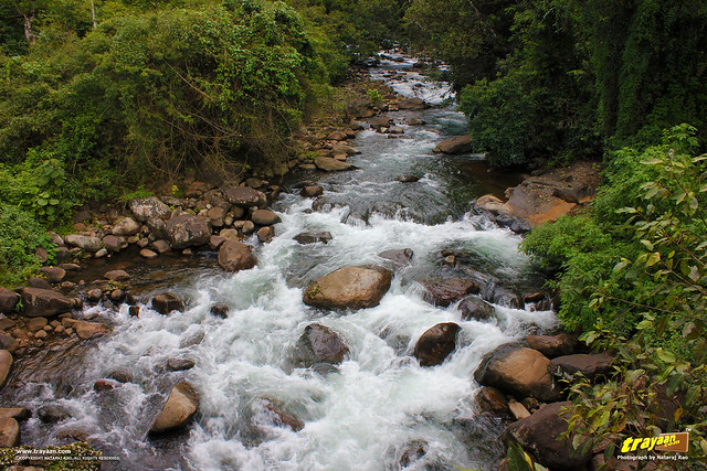 A beautiful stream by a road, in Wayanad, Kerala, India