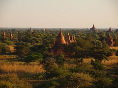 Late afternoon sun over Bagan (Myanmar 2013)