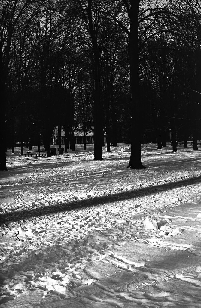 Eastman 5363 Test - Roll 1 - High Park