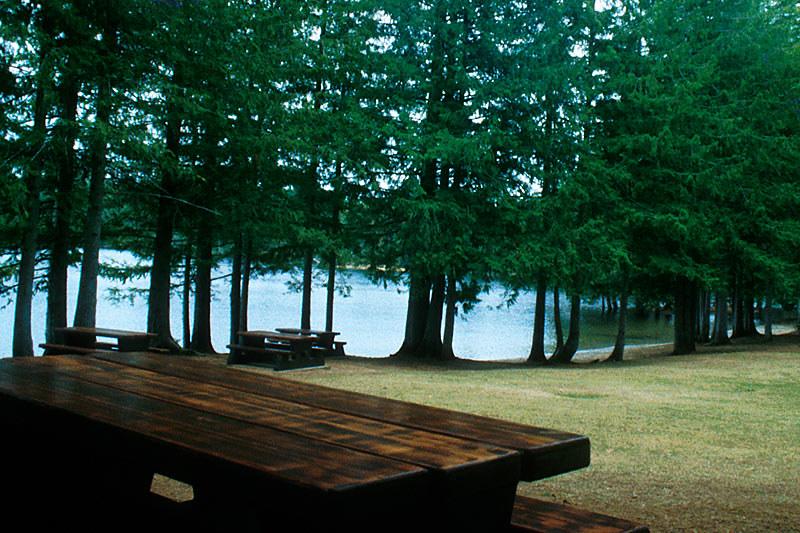 Spider Lake Park, Qualicum Bay, Vancouver Island, British Columbia, Canada