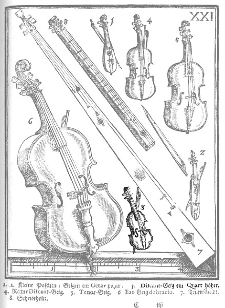 The violin family. No.4 is a standard violin and no.6 the bass violin.