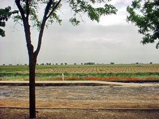 La vista desde la estación ferrocarril de Noblejas